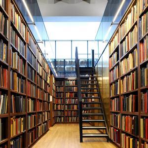 Библиотеки Михайловского